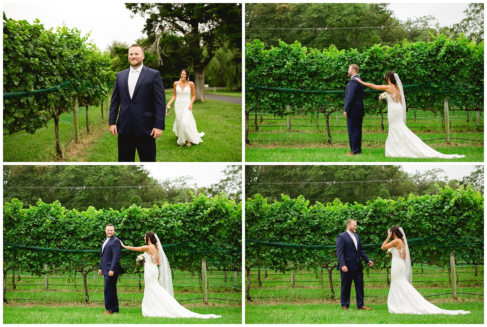 willow creek winery wedding cape may wedding cape may new jersey winery wedding outdoor ceremony tent ceremony